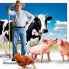Вниманию глав крестьянских (фермерских) хозяйств и граждан ведущих личное подсобное хозяйство