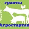 Стартовал приём заявок «Агростартап»