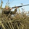 Об установлении ограничения весенней охоты на территории Амурской области в 2020 году