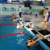 """В Спортшколе """"Олимп"""" прошли соревнования по плаванию """"День спринтёра"""""""