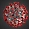 В Тынде случаев заболевания новой коронавирусной инфекцией (COVID-19) не выявлено